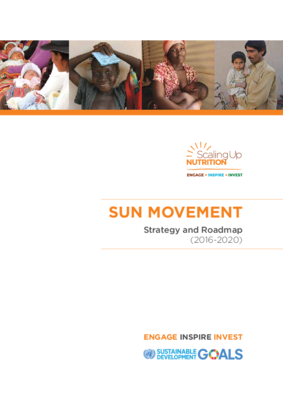 SUN Movement Strategy & Roadmap 2016-2020